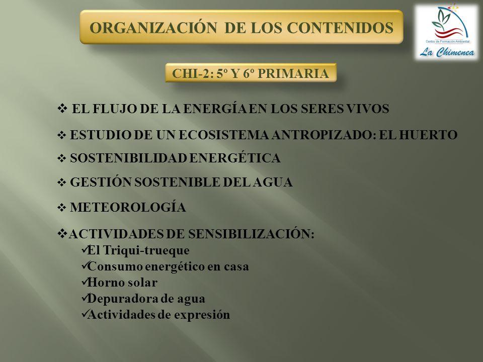 ORGANIZACIÓN DE LOS CONTENIDOS