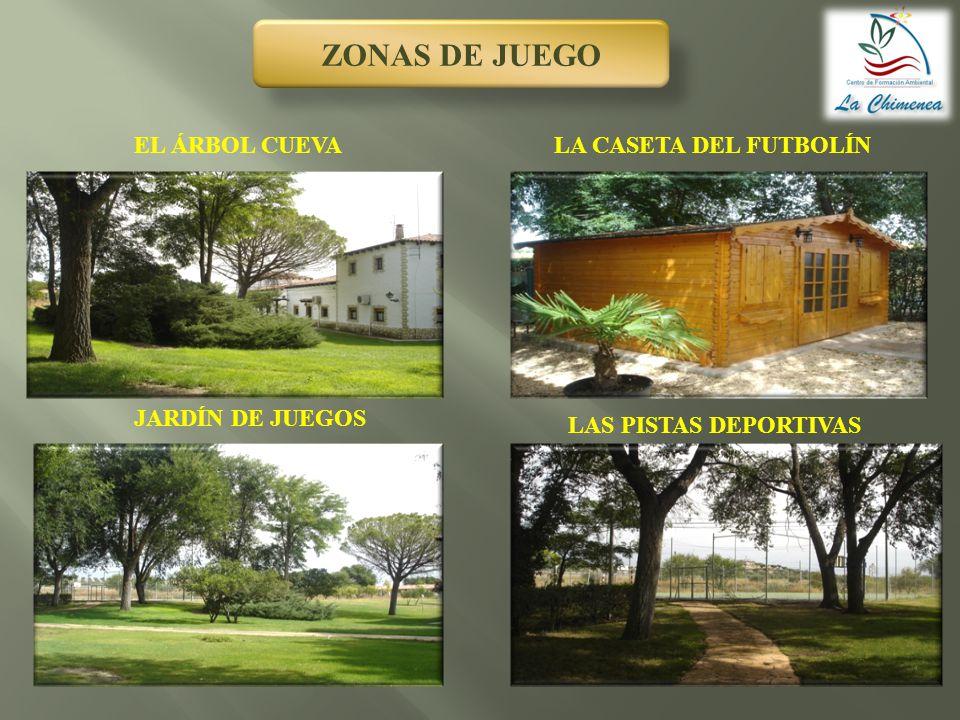 ZONAS DE JUEGO EL ÁRBOL CUEVA LA CASETA DEL FUTBOLÍN JARDÍN DE JUEGOS
