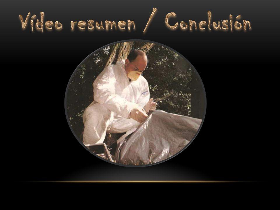 Vídeo resumen / Conclusión
