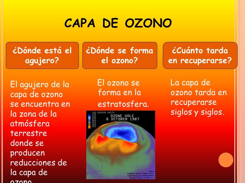 ¿Dónde se forma el ozono ¿Cuánto tarda en recuperarse