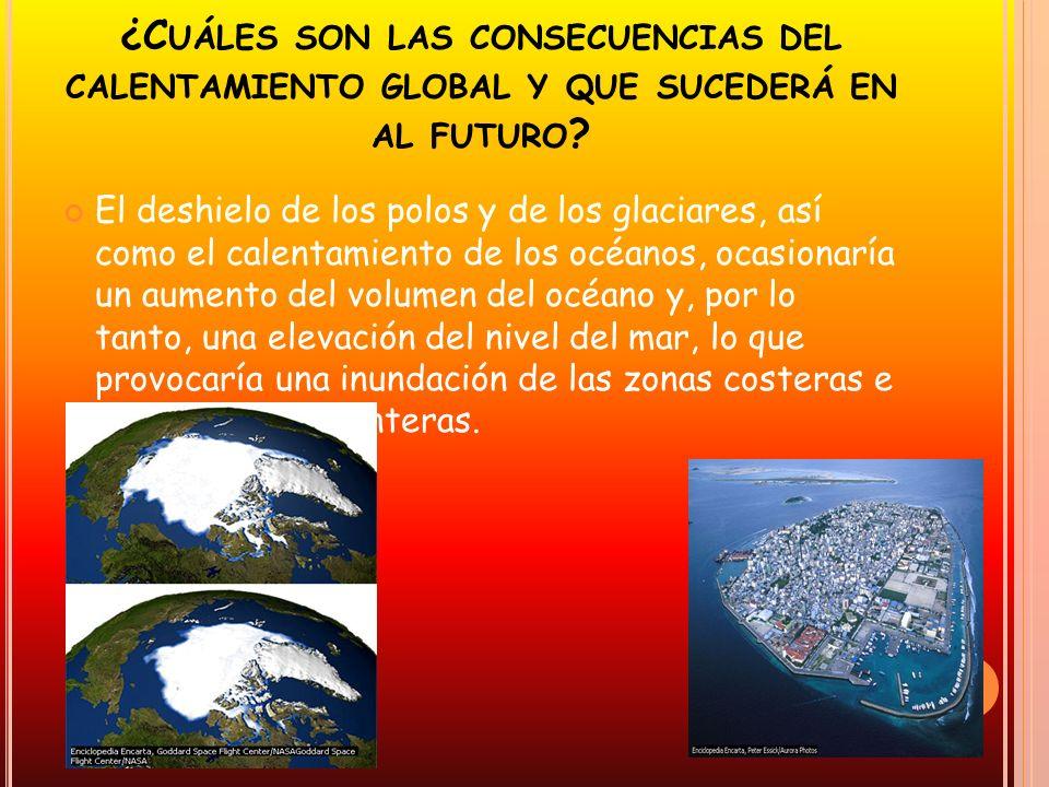 ¿Cuáles son las consecuencias del calentamiento global y que sucederá en al futuro