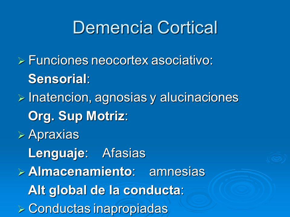 Demencia Cortical Funciones neocortex asociativo: Sensorial: