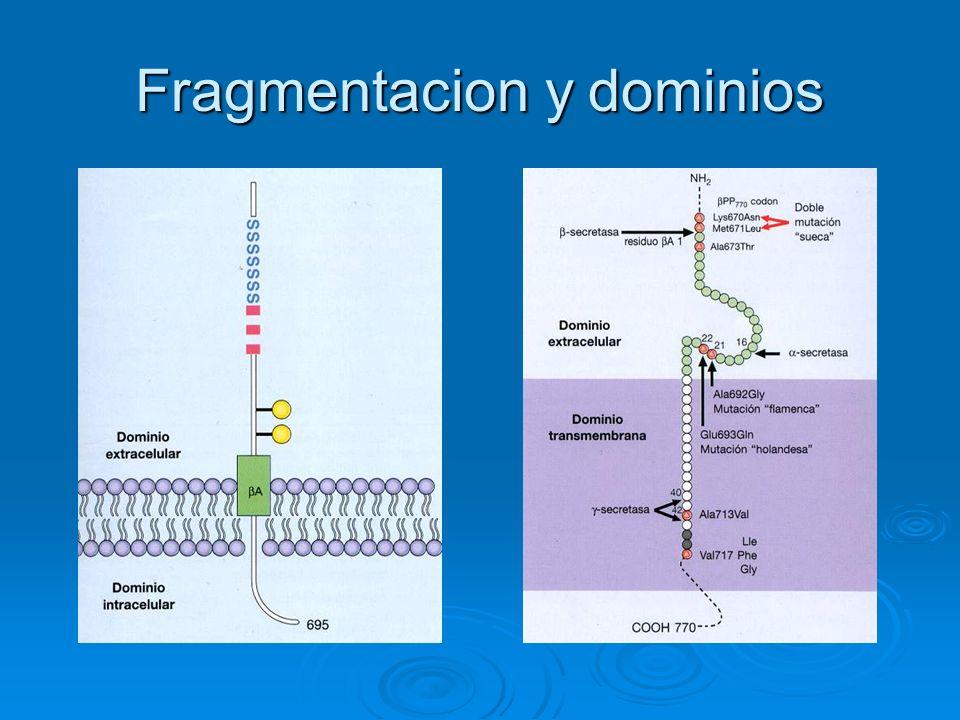 Fragmentacion y dominios