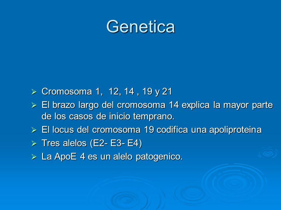 Genetica Cromosoma 1, 12, 14 , 19 y 21. El brazo largo del cromosoma 14 explica la mayor parte de los casos de inicio temprano.