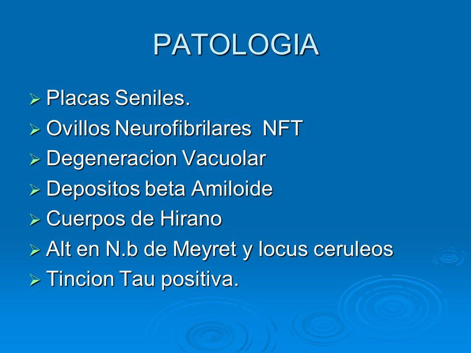 PATOLOGIA Placas Seniles. Ovillos Neurofibrilares NFT