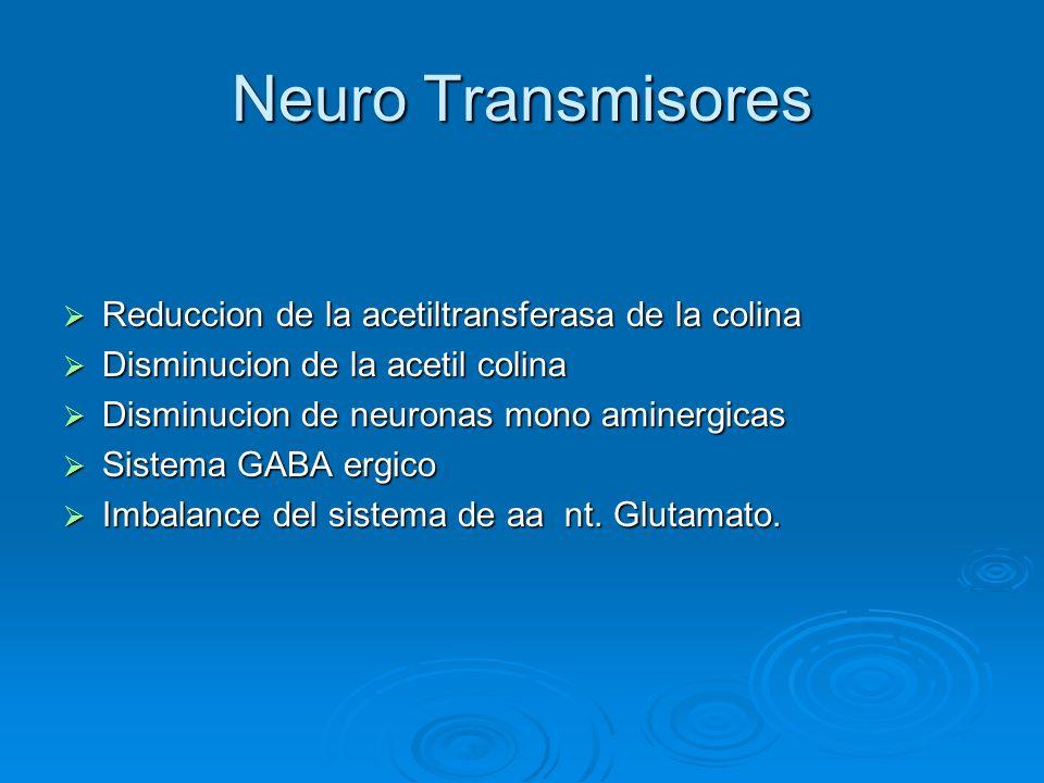 Neuro Transmisores Reduccion de la acetiltransferasa de la colina