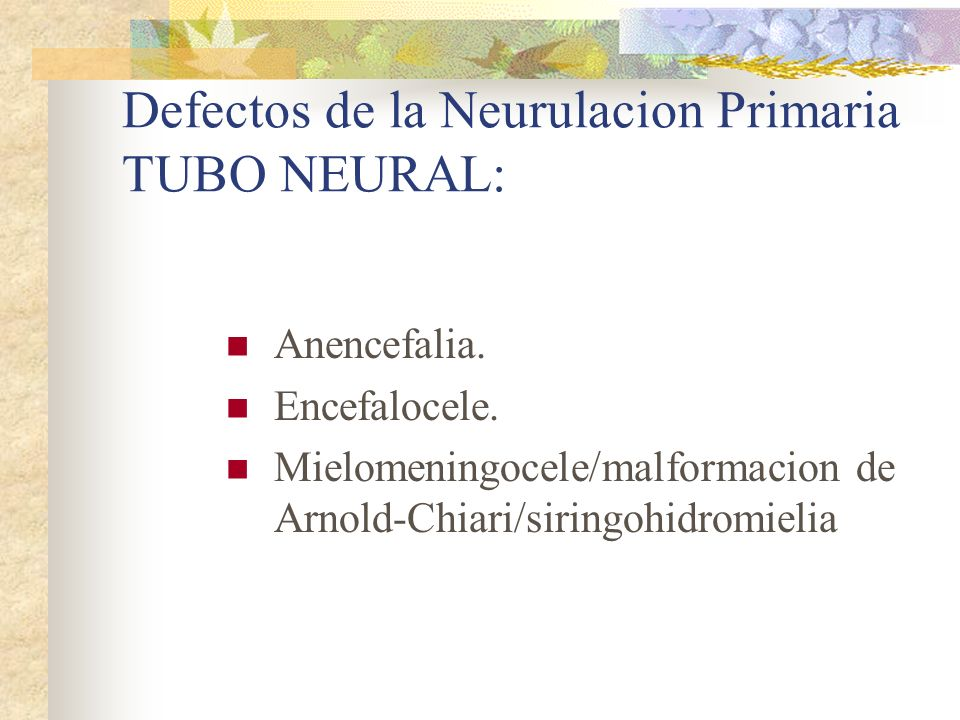 Defectos de la Neurulacion Primaria TUBO NEURAL: