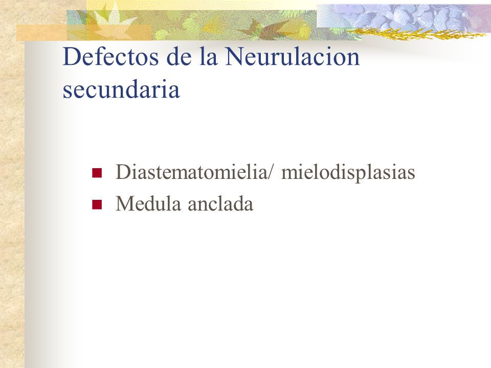 Defectos de la Neurulacion secundaria