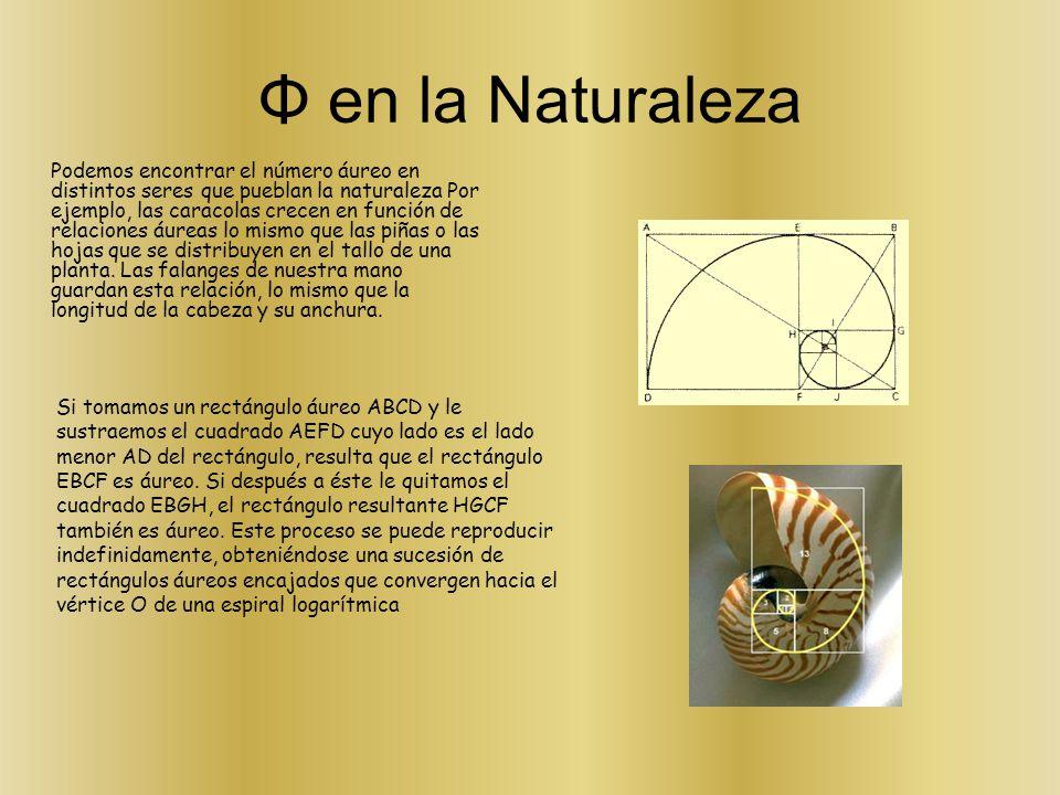 Φ en la Naturaleza