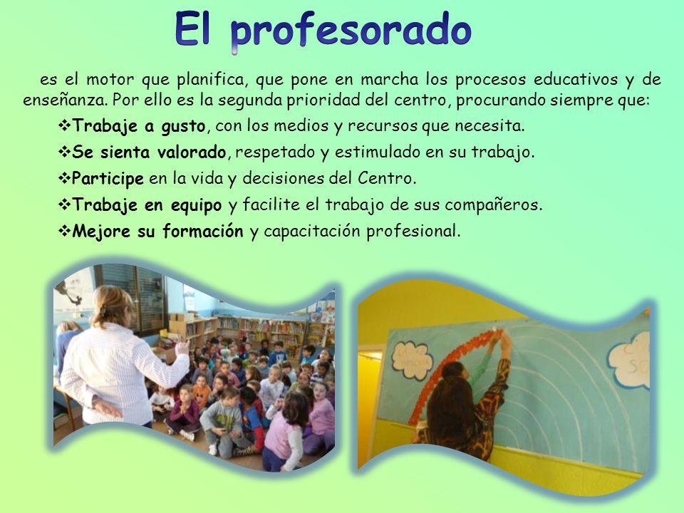 El profesorado