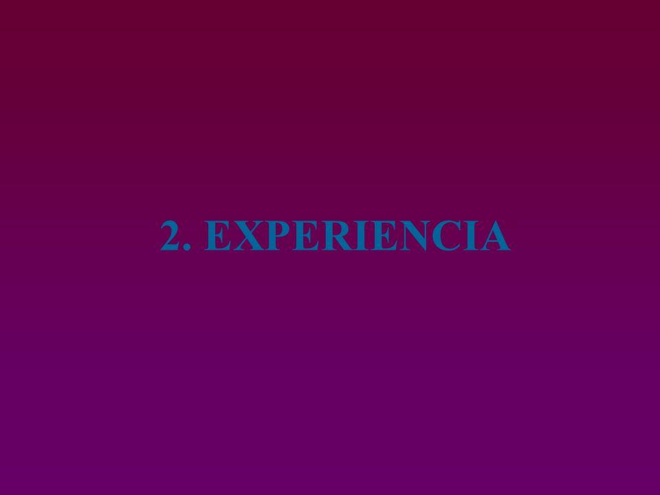 2. EXPERIENCIA