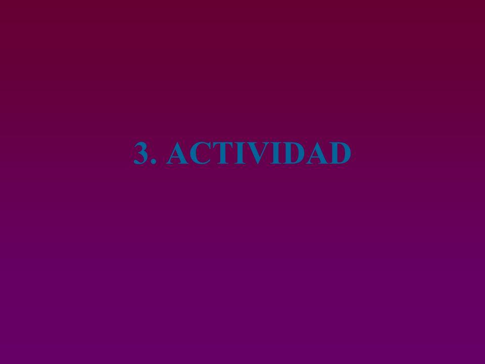 3. ACTIVIDAD