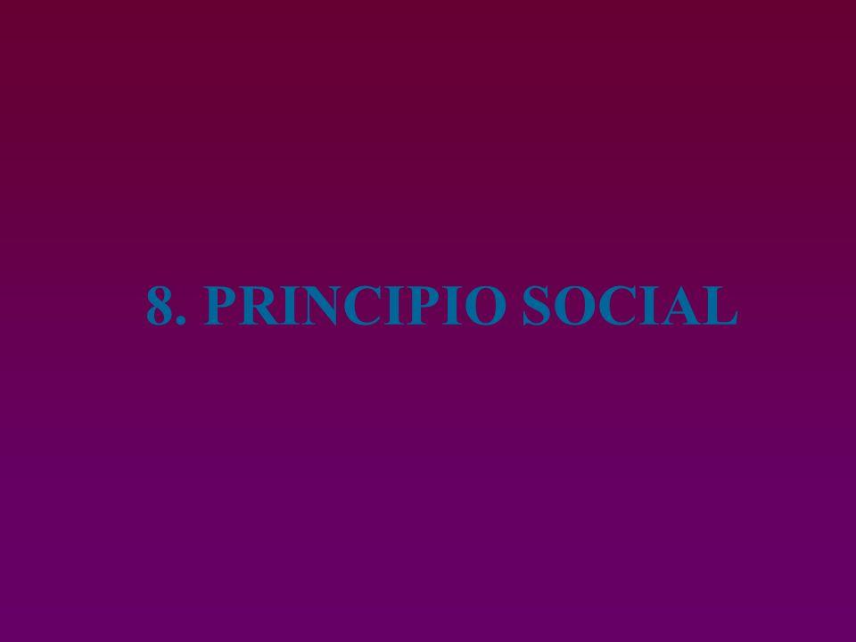 8. PRINCIPIO SOCIAL
