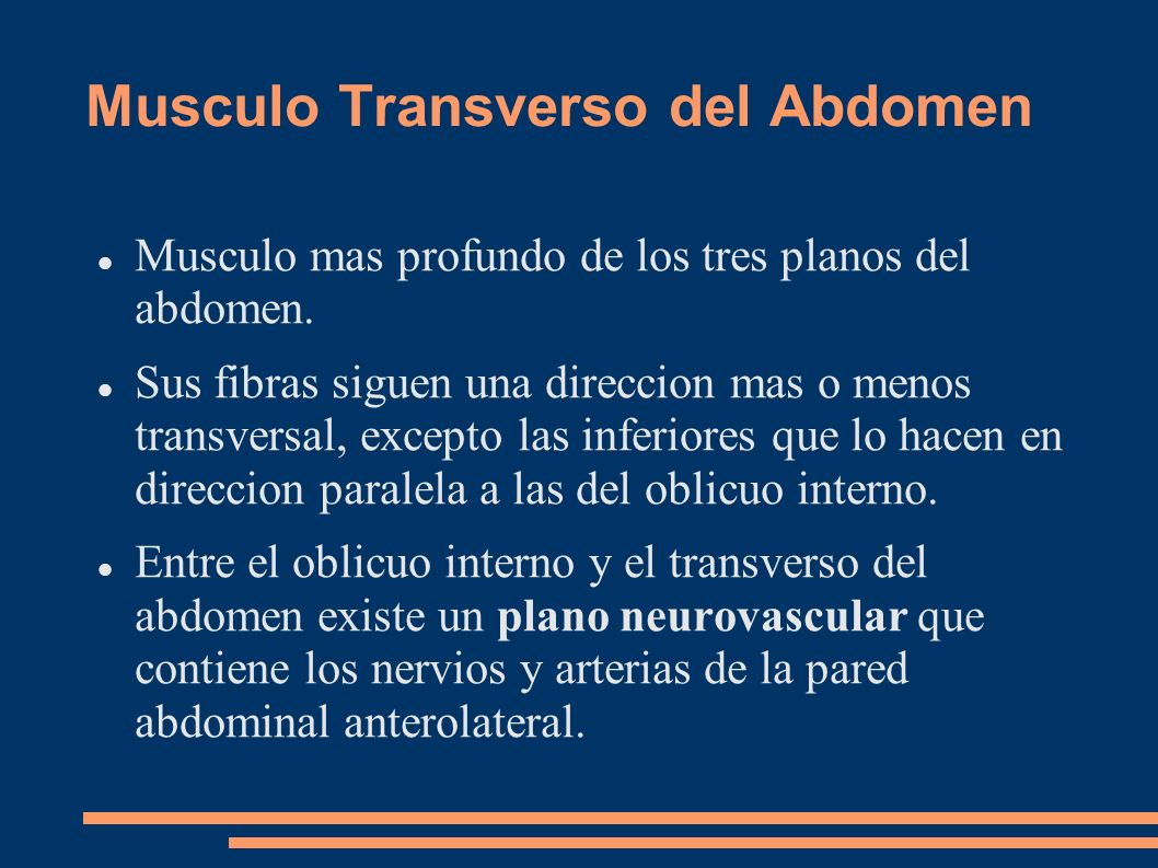 Musculo Transverso del Abdomen