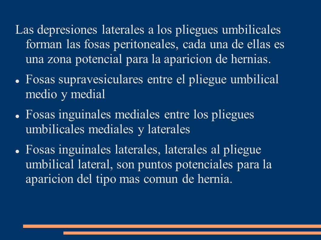 Las depresiones laterales a los pliegues umbilicales forman las fosas peritoneales, cada una de ellas es una zona potencial para la aparicion de hernias.