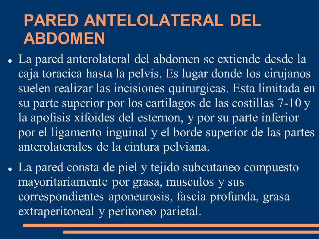 PARED ANTELOLATERAL DEL ABDOMEN