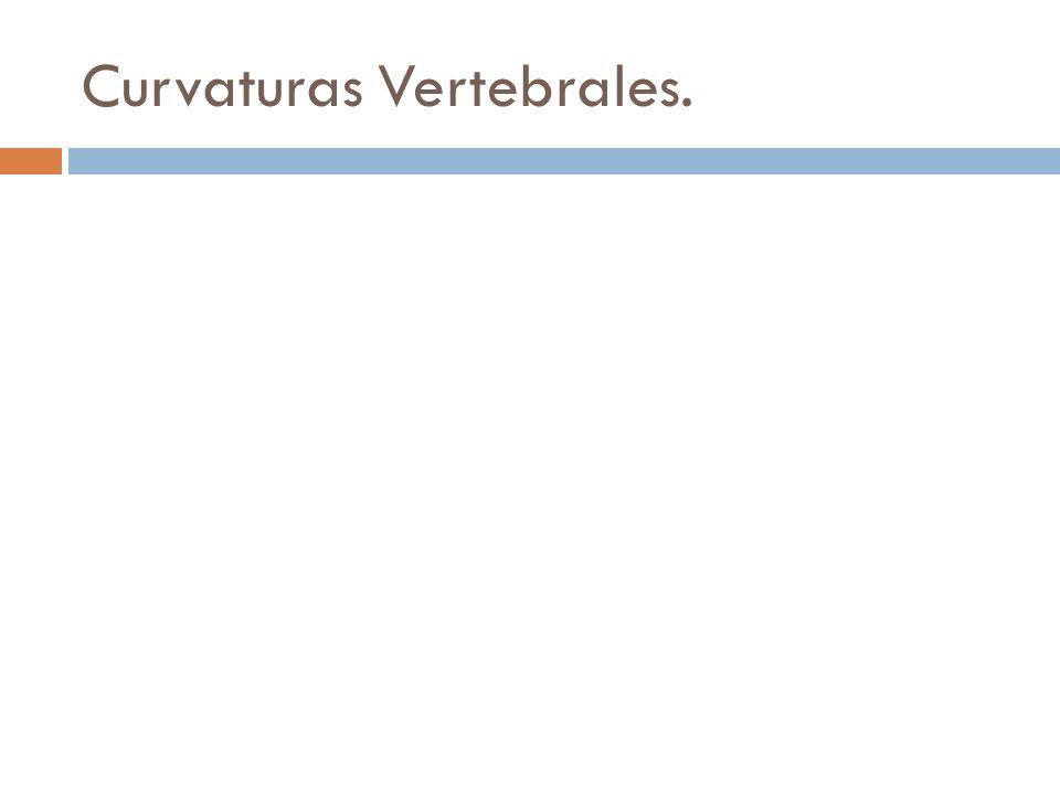 Curvaturas Vertebrales.