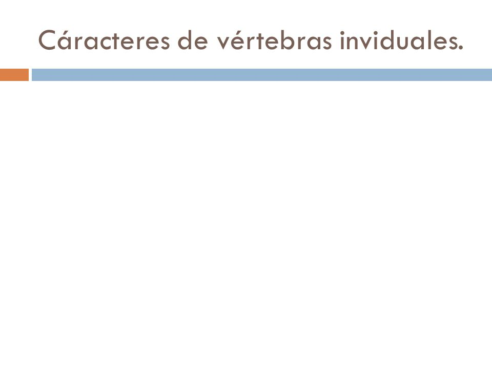 Cáracteres de vértebras inviduales.