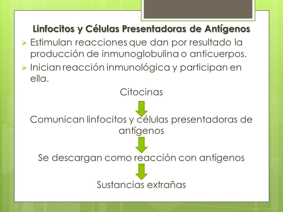 Linfocitos y Células Presentadoras de Antígenos