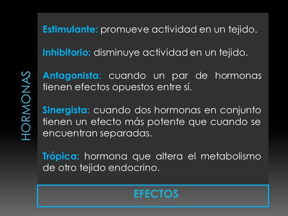 HORMONAS Estimulante: promueve actividad en un tejido.