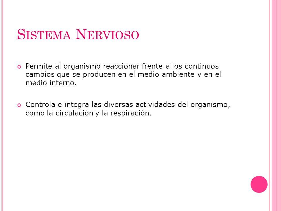 Sistema Nervioso Permite al organismo reaccionar frente a los continuos cambios que se producen en el medio ambiente y en el medio interno.