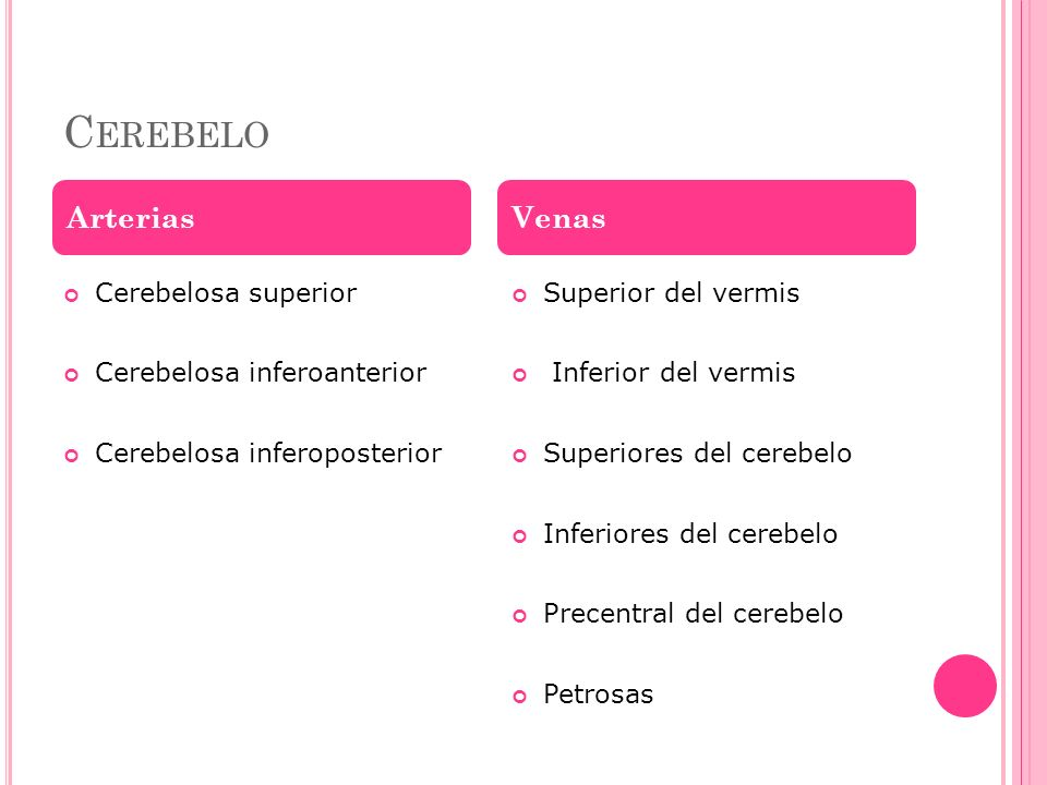 Cerebelo Arterias Venas Cerebelosa superior Cerebelosa inferoanterior