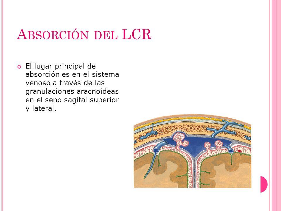 Absorción del LCR