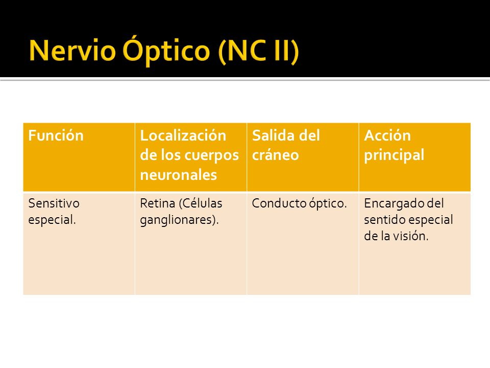 Nervio Óptico (NC II) Función Localización de los cuerpos neuronales
