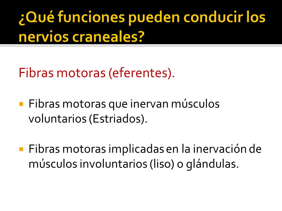 ¿Qué funciones pueden conducir los nervios craneales