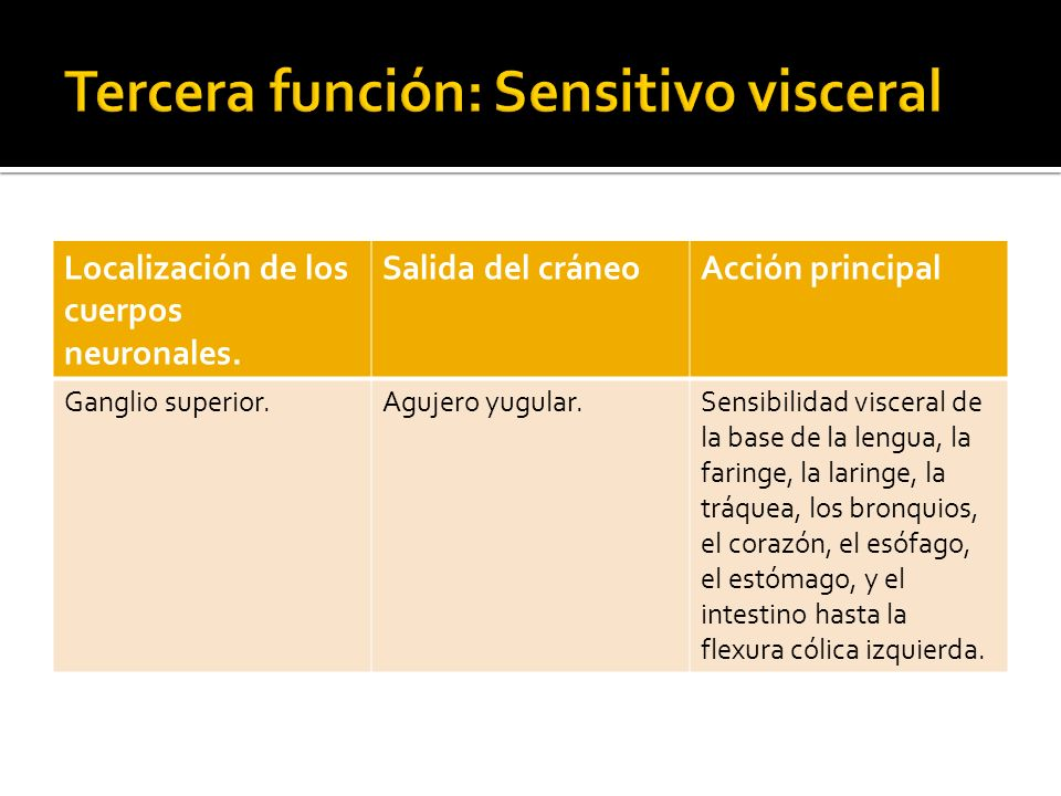 Tercera función: Sensitivo visceral