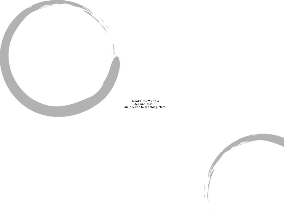 Visión inferior Cresta frontal: salen de las apófisis orbitaria externa.