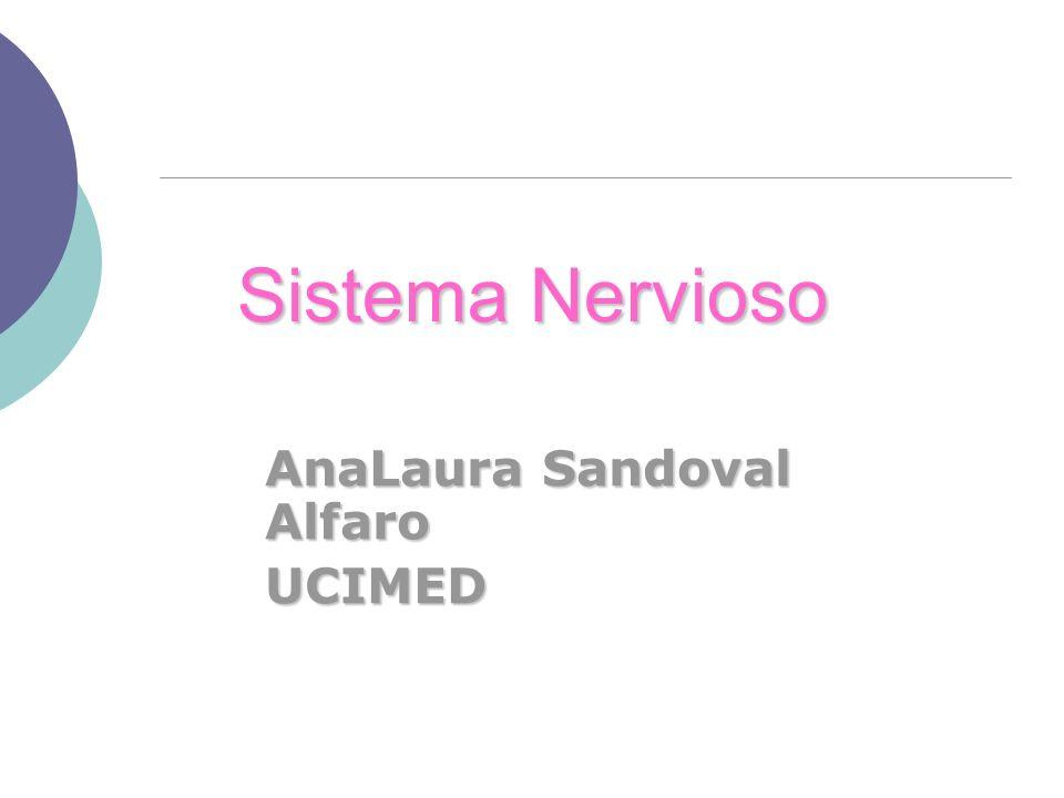 AnaLaura Sandoval Alfaro UCIMED