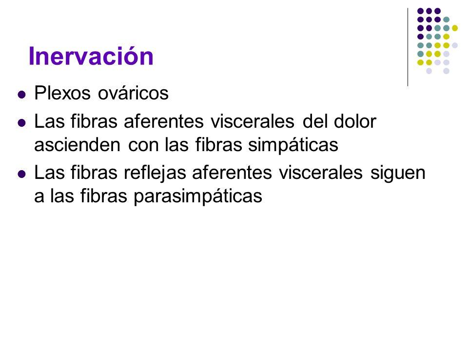 Inervación Plexos ováricos
