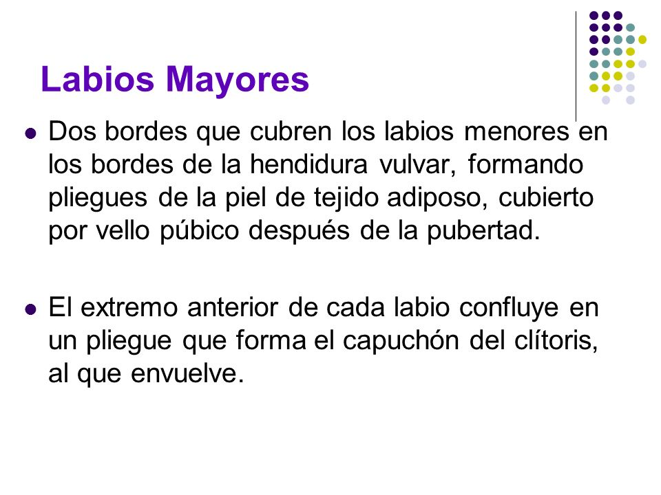 Labios Mayores