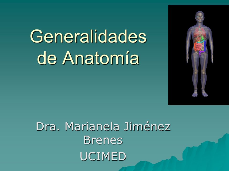Generalidades de Anatomía