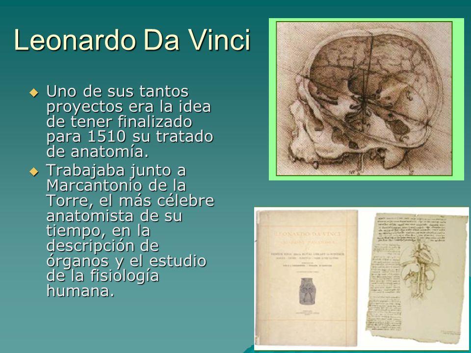 Leonardo Da VinciUno de sus tantos proyectos era la idea de tener finalizado para 1510 su tratado de anatomía.