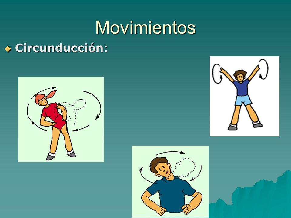 Movimientos Circunducción: