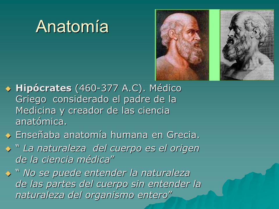 Anatomía Hipócrates (460-377 A.C). Médico Griego considerado el padre de la Medicina y creador de las ciencia anatómica.