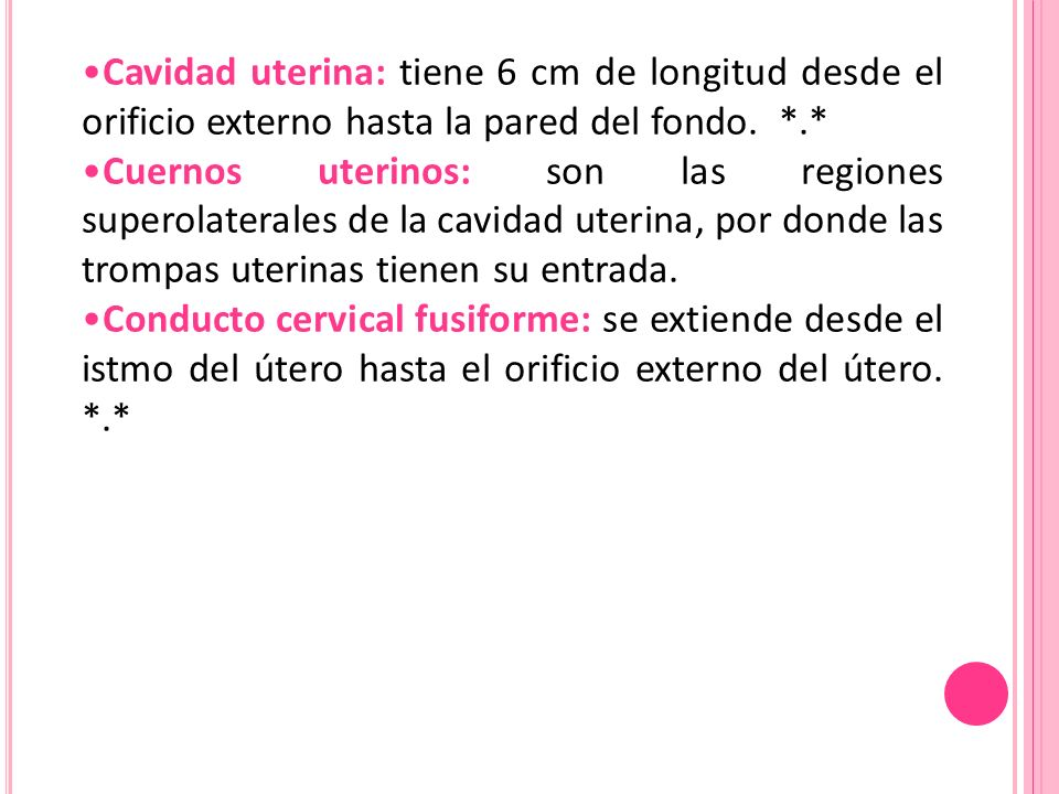 Cavidad uterina: tiene 6 cm de longitud desde el orificio externo hasta la pared del fondo. *.*