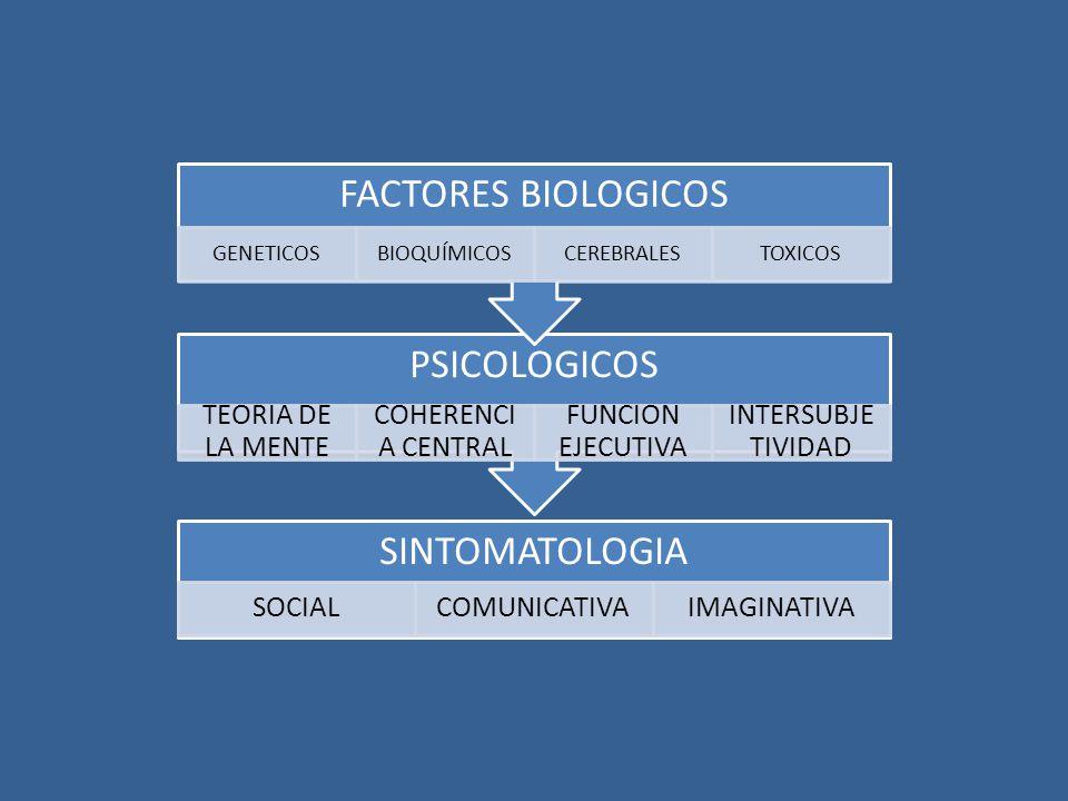 FACTORES BIOLOGICOS PSICOLOGICOS SINTOMATOLOGIA TEORIA DE LA MENTE