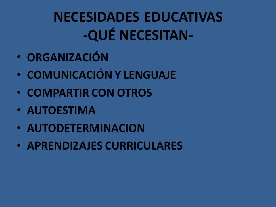 NECESIDADES EDUCATIVAS -QUÉ NECESITAN-