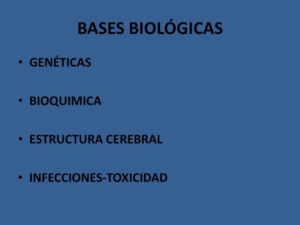 BASES BIOLÓGICAS GENÉTICAS BIOQUIMICA ESTRUCTURA CEREBRAL