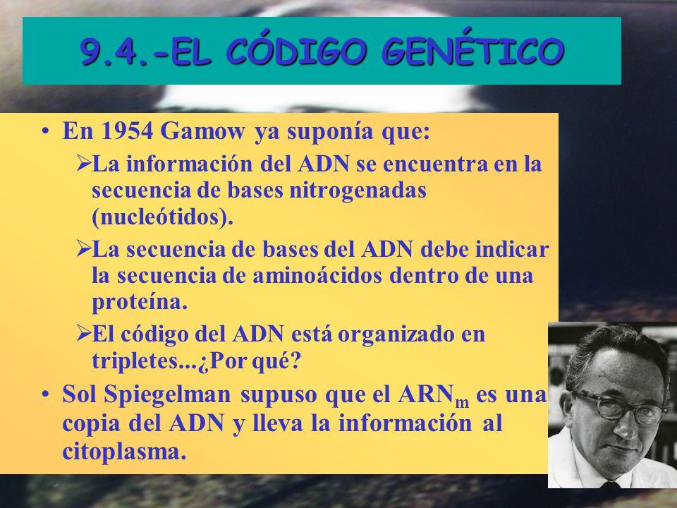 9.4.-EL CÓDIGO GENÉTICO En 1954 Gamow ya suponía que: