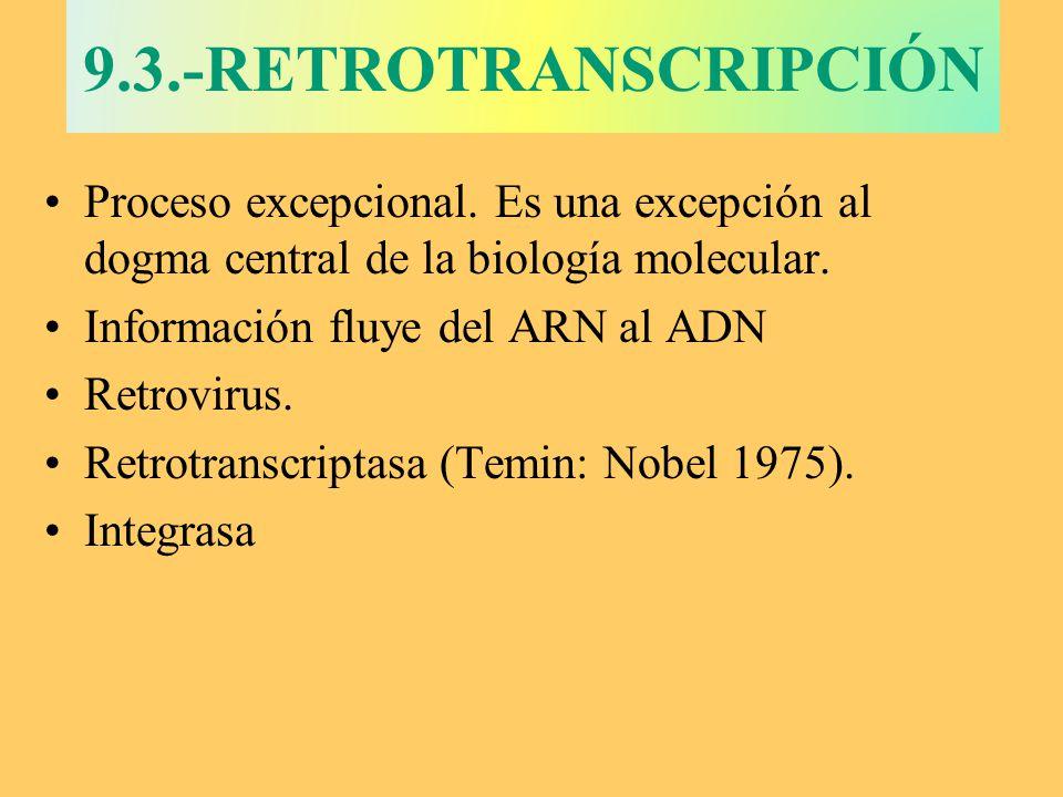 9.3.-RETROTRANSCRIPCIÓN Proceso excepcional. Es una excepción al dogma central de la biología molecular.