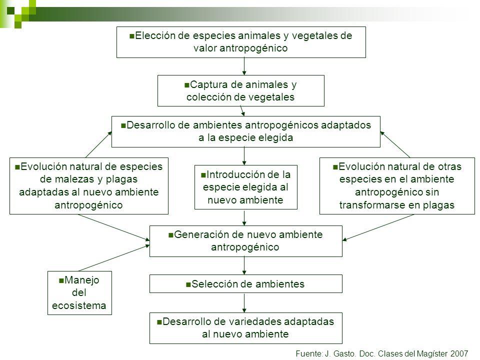 Elección de especies animales y vegetales de valor antropogénico