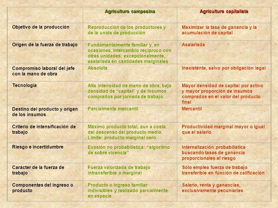 Agricultura campesina Agricultura capitalista