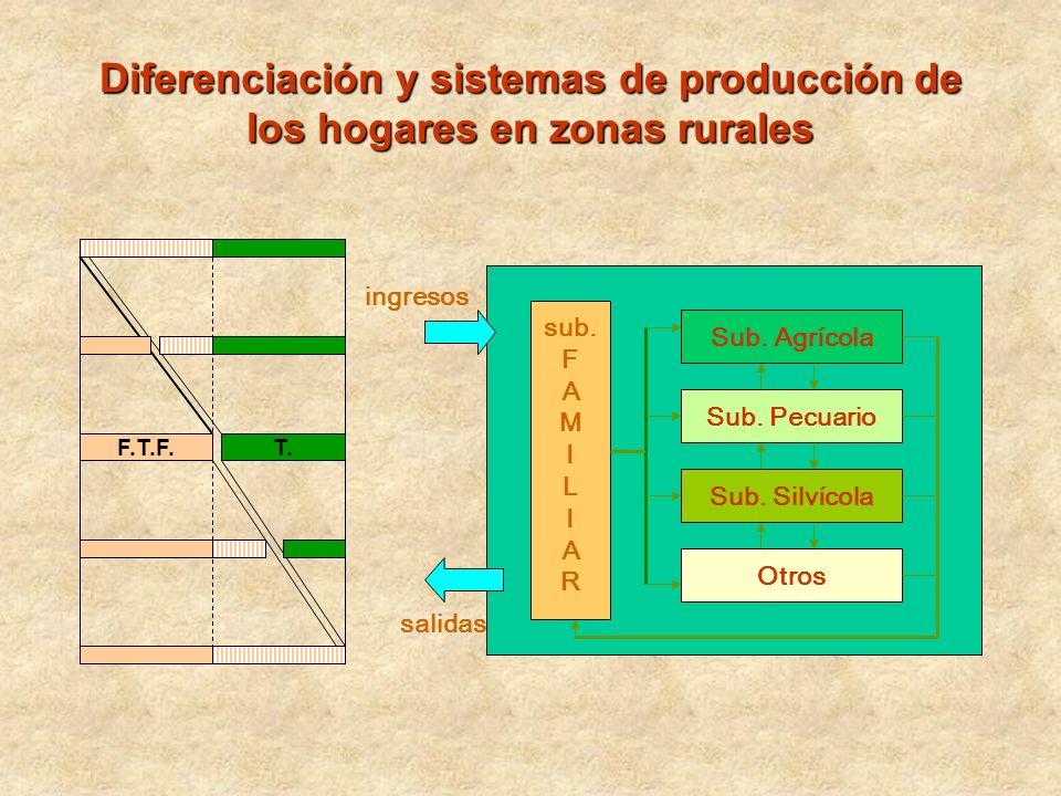 Diferenciación y sistemas de producción de los hogares en zonas rurales