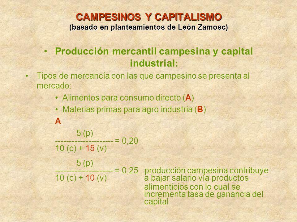 CAMPESINOS Y CAPITALISMO (basado en planteamientos de León Zamosc)