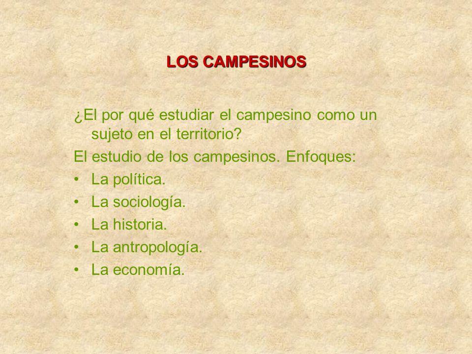 LOS CAMPESINOS ¿El por qué estudiar el campesino como un sujeto en el territorio El estudio de los campesinos. Enfoques: