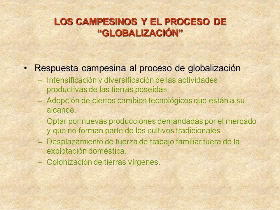LOS CAMPESINOS Y EL PROCESO DE GLOBALIZACIÓN